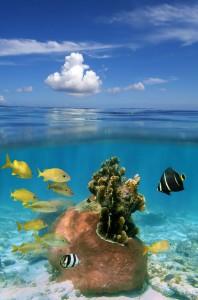 Exuma Cays Land and Sea National Park
